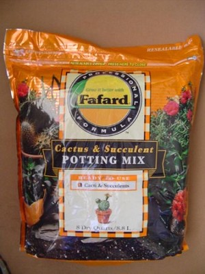 Professional Cactus & Succulent Potting Mix